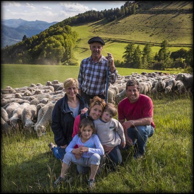 Hautes-Alpes (05), Vallée du Champsaur, Ancelle, Ferme des Sonnailles, famille Pellissier, exploitation familliale élevage et vente direct d'agneau, saucisses, merguez, saucissons, steak haché agneau et terrines à l'agneau  // Hautes-Alpes (05), Valley Champsaur Ancelle Farm Sonnailles, Pellissier family, family farm livestock and live lamb sales, sausages, merguez, saucissons, hamburger and lamb terrine with lamb