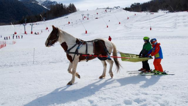 Ski joering à Ancelle